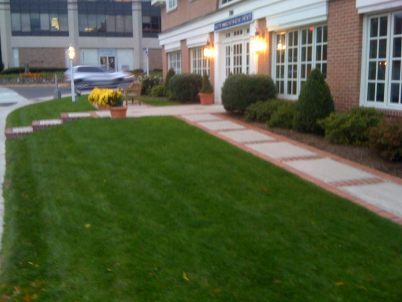 Vega Commercial landscaping